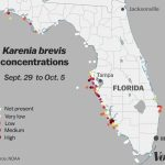 Red Tide: Why Florida's Toxic Algae Bloom Is Killing Fish, Manatees   Florida Beach Bacteria Map 2018