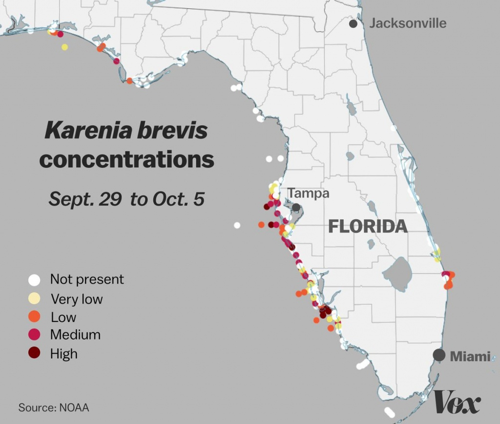 Red Tide: Why Florida's Toxic Algae Bloom Is Killing Fish, Manatees - Florida Beach Bacteria Map 2018