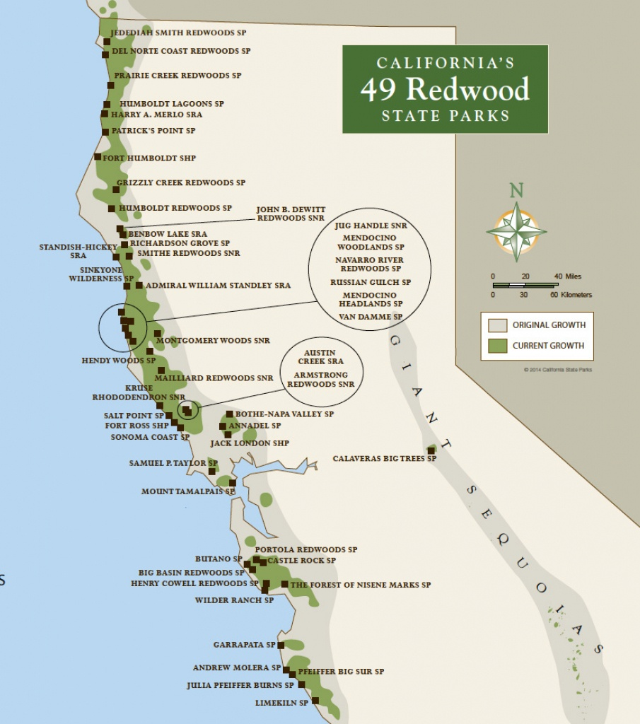 Redwood Parks Day Passes 'sold Out' (2015) | Save The Redwoods League - Where Is The Redwood Forest In California On A Map