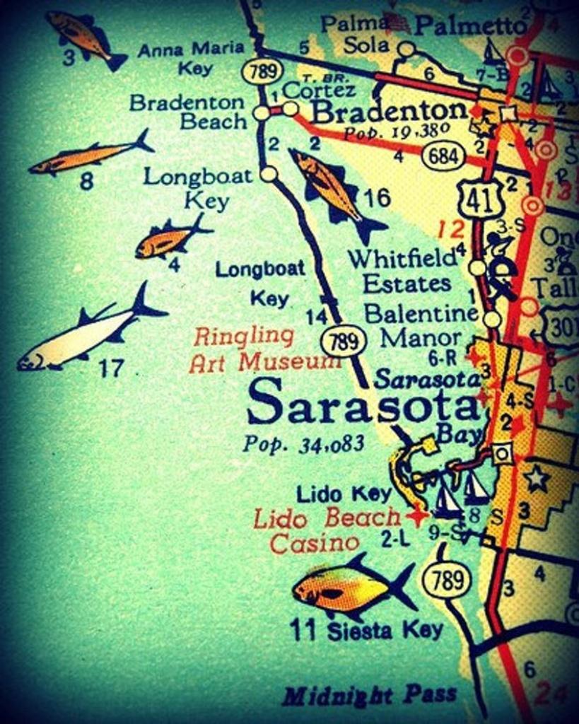 Sarasota Siesta Key Florida 11X14 Vintage Map Photograph Beach | Etsy - Sarasota Beach Florida Map