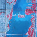 Sea Level Rise And Coastal Cities | National Geographic Society   Map Of Florida After Sea Level Rise