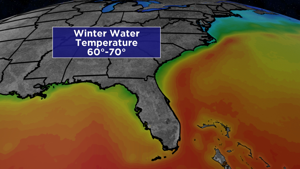 Sunshine State Staying Warm In Winter - Florida Water Temperature Map