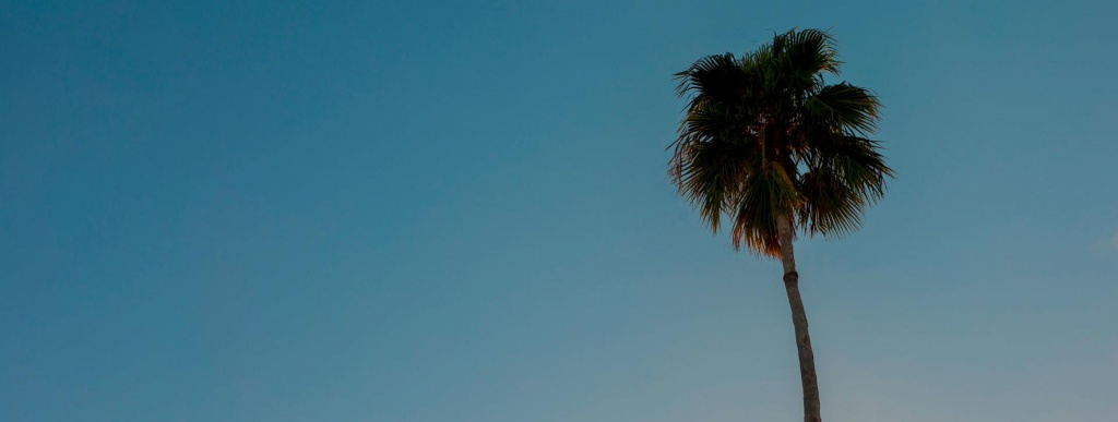 Tampa Beaches | Visit Tampa Bay - Map Of Tampa Florida Beaches