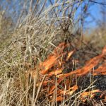 Texas Wildfires Map – Wildfires In Texas – Wildland Fire - West Texas Fires Map