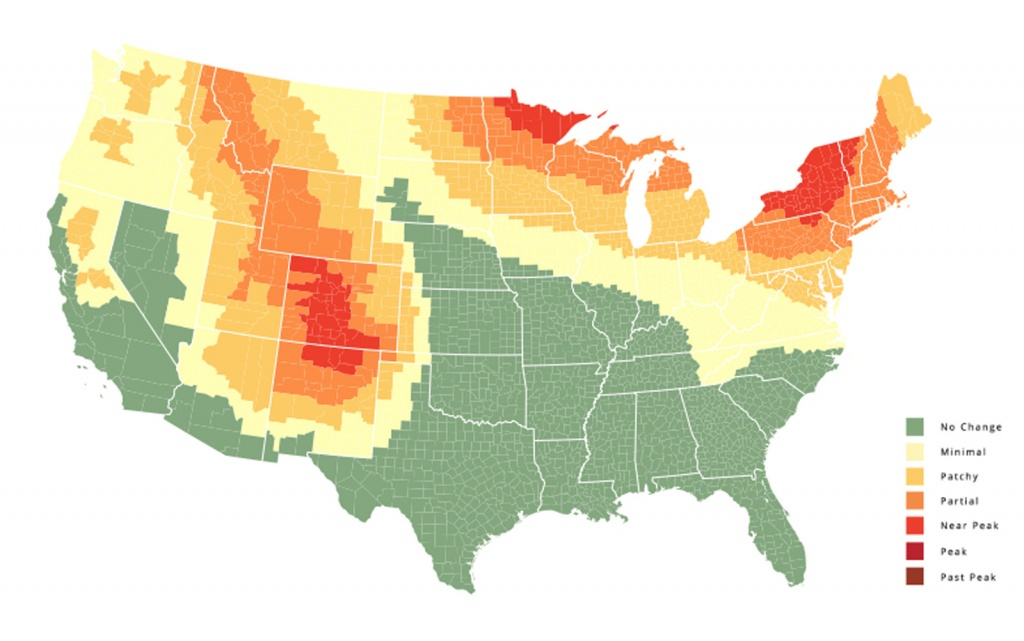 The Best Places To See Fall Foliage In The United States   Travel + - California Fall Color Map