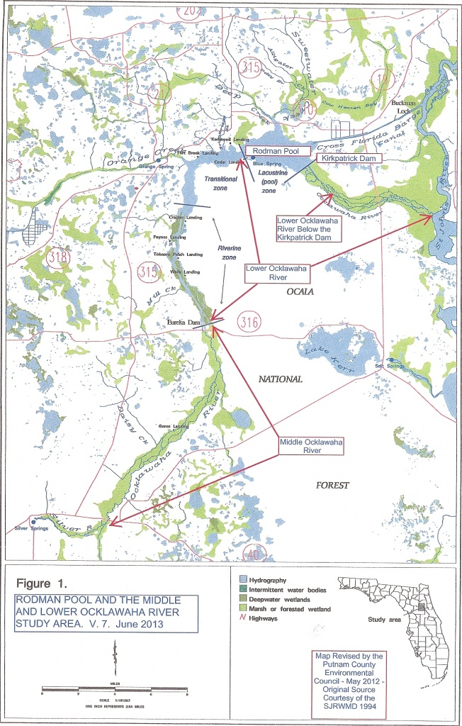 The Ocklawaha Ecosystem | Florida Defenders Of The Environment - Ocklawaha Florida Map