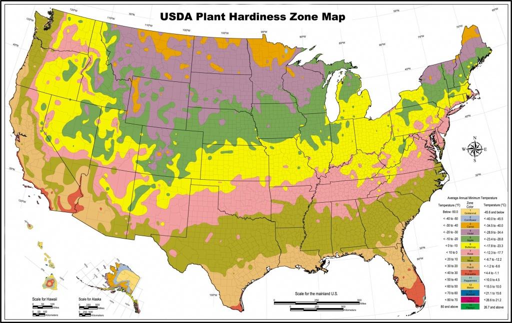 Usda Zone Map For Los Angeles Gardeners - Lawnstarter - Usda Zone Map California