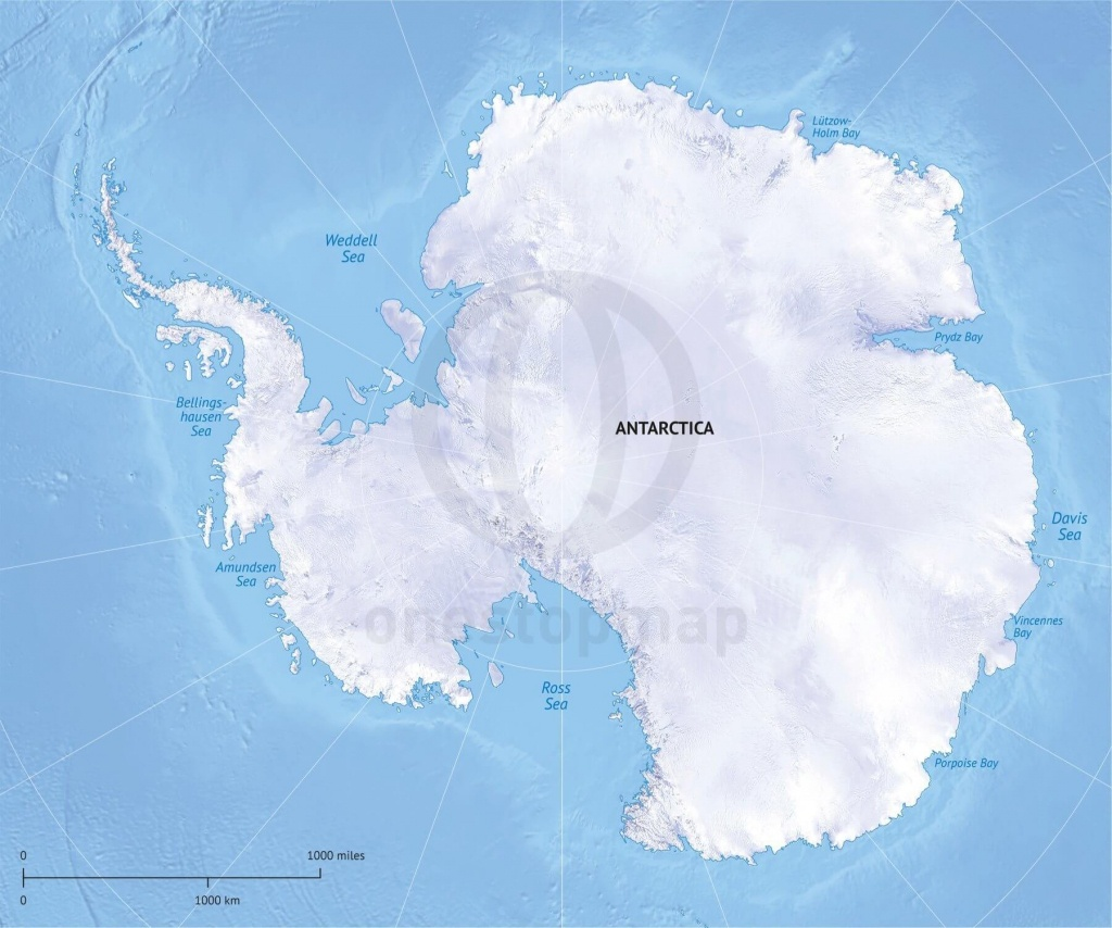 Vector Map Antarctica Continent Relief | One Stop Map - Printable Map Of Antarctica