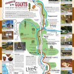View Map   Avenue Of The Giants - Avenue Of The Giants California Map