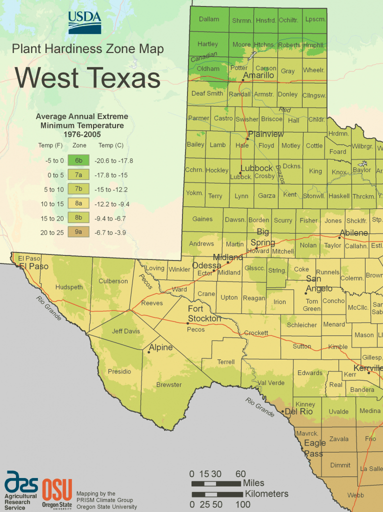 West Texas Plant Hardiness Zone Map • Mapsof - Texas Hardiness Zone Map